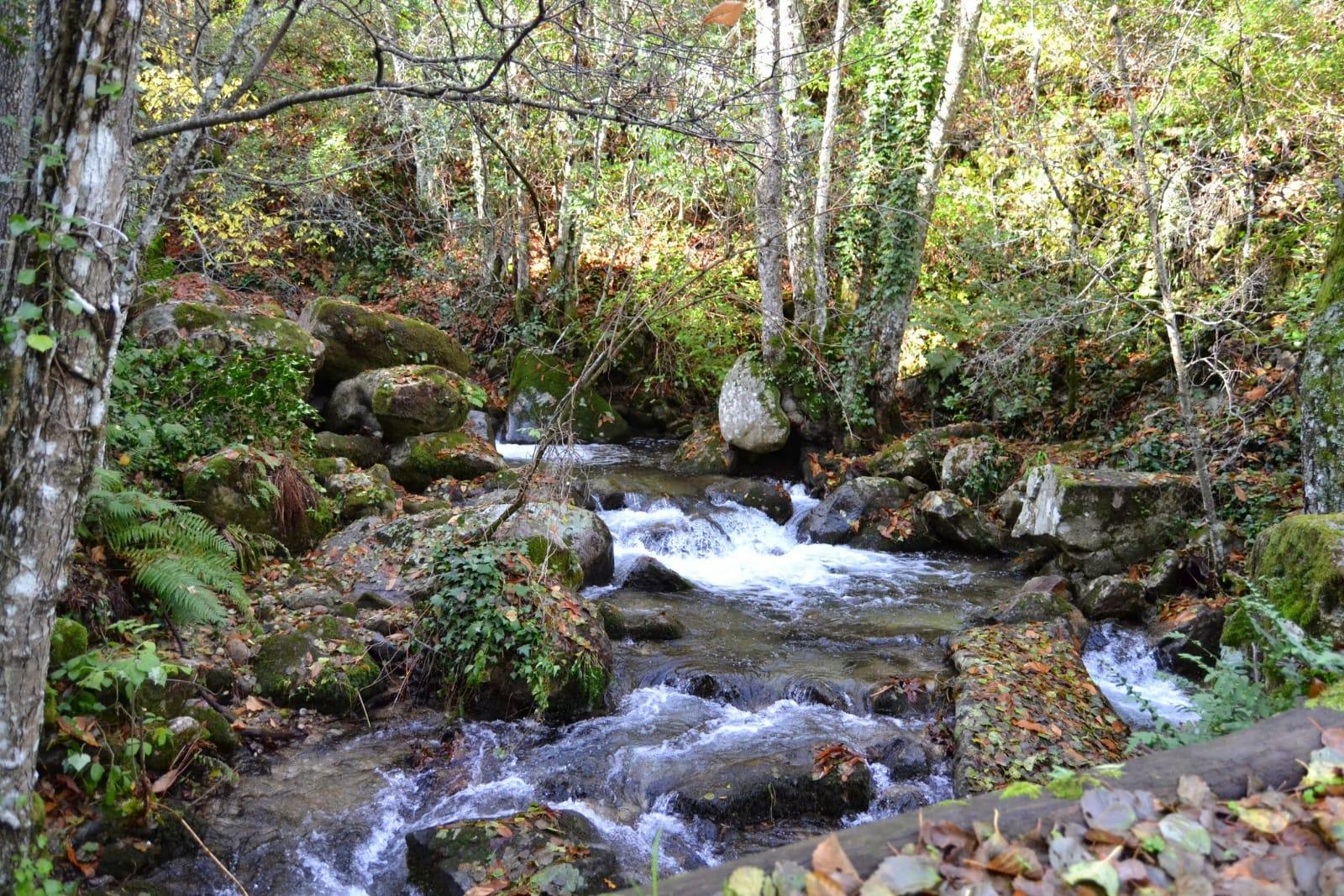 Cauce de un río de montaña. Bohemian en una marca comprometida con la moda sostenible y el medio ambiente